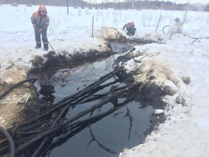 Нефть в лесу